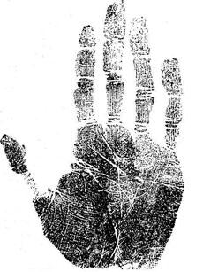Рука молодой женщины