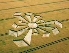 Признаки настоящих кругов на полях