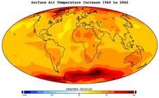 Глобальное потепление: роль растений пересматривается