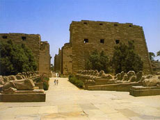 В Египте обнаружен 7-тысячелетний город